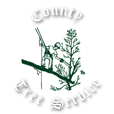 County Tree Service Logo
